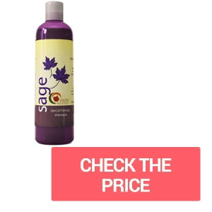 The Maple Holistics favorite loved by everyone