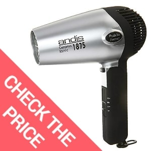 Andis 1875-Watt Fold-N-Go Ionic Hair Dryer, Silver/Black